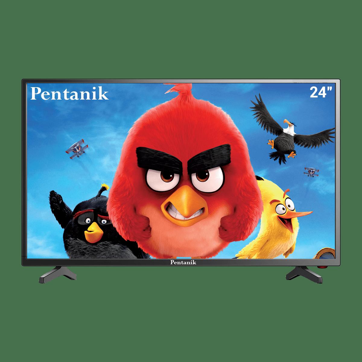 """Pentanik 24"""" Basic LED TV"""