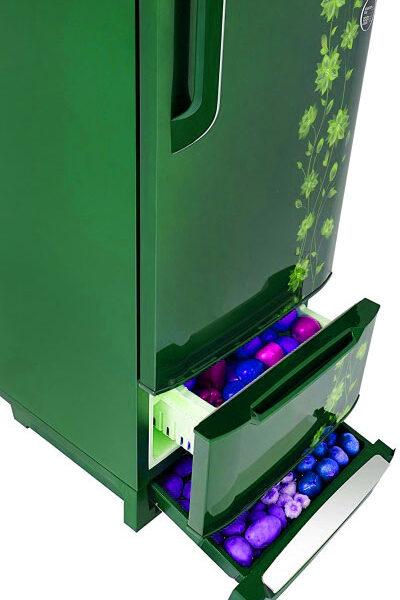 Pentanik 236L Inverter Non-Frost Refrigerator